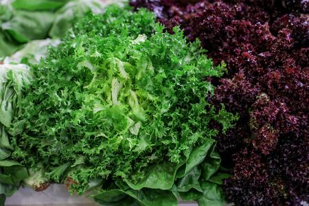 Variety of fresh lettuce salads.