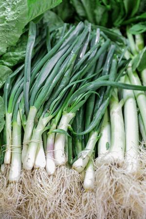 green onions: Fresh organic green onions.