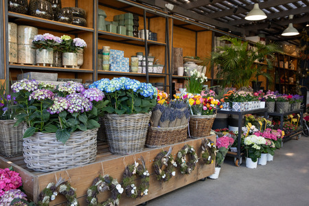 Flowers bar with variety of fresh beautiful flowers such as hydrangea macrophylla, lavender, persian buttercups and other plants for your interior decorations at the greek garden shop. Stok Fotoğraf