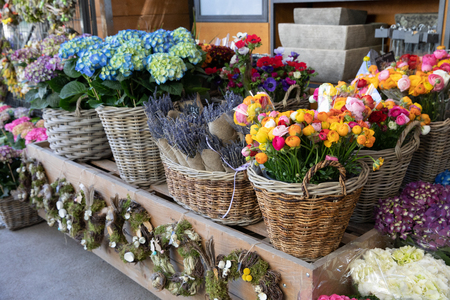 Flowers bar with variety of fresh beautiful flowers such as persian buttercups, anemone coronaria, lavender, hydrangea macrophylla for your interior flower decorations at the greek garden shop.