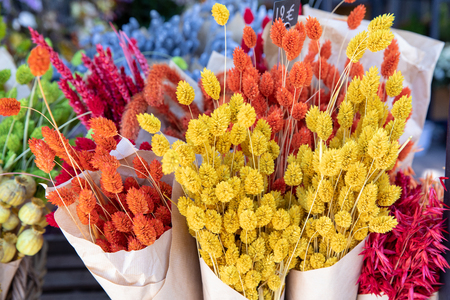Natural plant dried flowers home decoration eternal flower bouquets with a floral grass with multicolored gems flores secas dried plants in the flowers bar.
