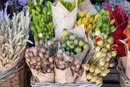 Variety of natural plant dried flowers home decoration eternal flower bouquets of wheat spikelets, poppy heads, multicolored gems floral grass in the flowers bar.
