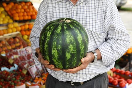 Ripe watermelon in the hands of the seller of the greek vegetable fruit shop.