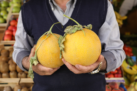 Two ripe melons in the hands of the seller of the greek vegetable fruit shop. Horizontal. Close-up.