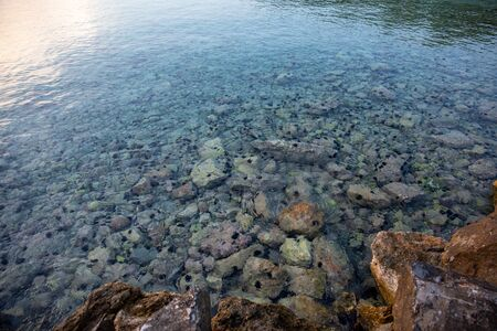 Summertime evening crystal clear water with sea urchins on the rocks near the Aponissos beach