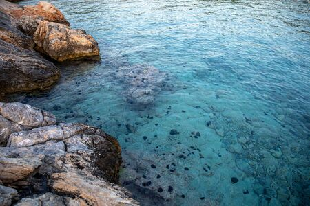 Summertime evening crystal clear water with sea urchins on the rocks near the Aponissos beach, Agistri island, Saronic gulf, Greece. Horizontal. Close-up.