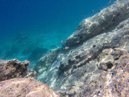 Underwater sea level photo of the Aponissos beach, Agistri island, Saronic Gulf, Greece.