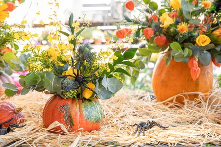 Variety of decorated Halloween pumpkins with flowers and leaves in the greek garden shop - Halloween celebration preparation.