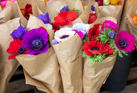 Beautiful bouquets of Anemone coronaria flowers in blue, purple, white, red colors in the flowers shop. Horizontal. Daylight. Close-up. Zdjęcie Seryjne