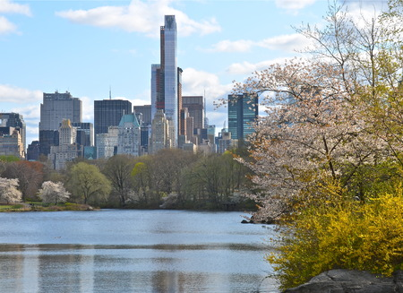 Spring in Central Park, Manhattan, New York  USA  photo