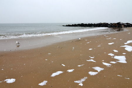 Ocean from Brighton Beach, New York, USA   photo