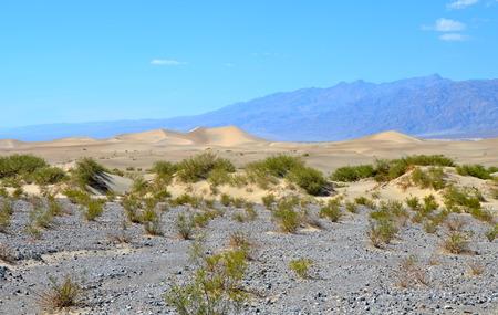 Sand dunes, Death Valley National Park, California, USA  photo