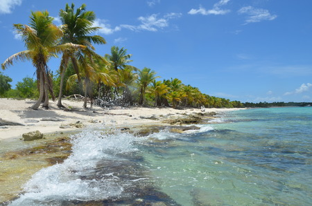 catalina: Tropical Beach, Catalina Island, Dominican Republic.