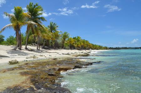 catalina: Tropical Beach, Catalina Island, Repubblica Dominicana.
