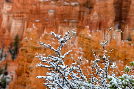 bryce canyon: Bryce Canyon National Park, USA