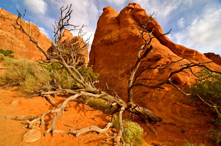 arches national park: Beautiful Arches National Park, Utah, USA Stock Photo