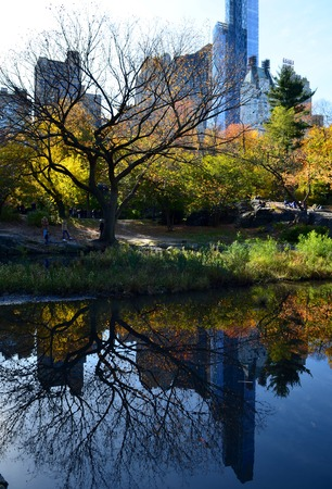 Central Park in the autumn, New York City, USA. Stock Photo