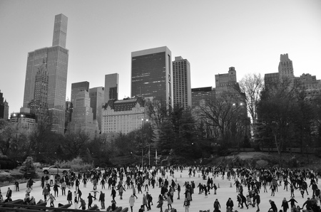 Central Park in the winter, New York City