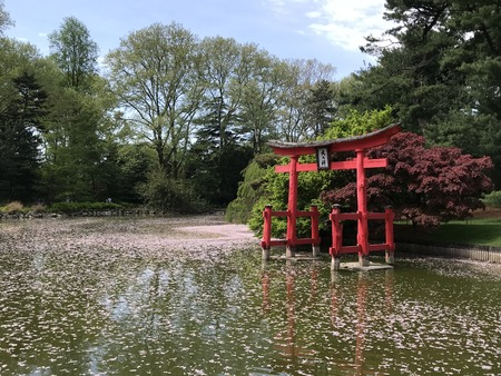 New York City - May 4, 2018: Brooklyn Botanic Garden. Stock Photo