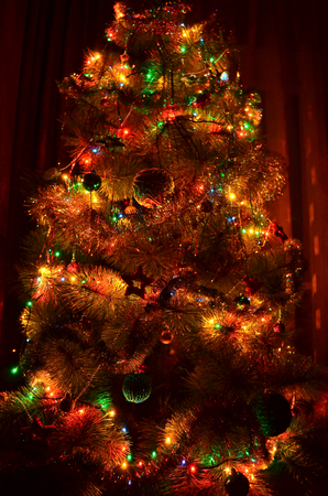 shimmer: Christmas tree. At a New Year tree a lot of different decorations in the form of balls, rain and garland with lights. When the tree glow in the dark lights garlands, decorations beautiful shine and shimmer in different colors. Christmas tree looks mysteri