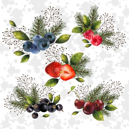 Christmas set of berries and spruce branches for your decor.