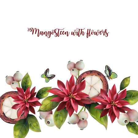 Pattern of mangosteen and red flowers on a white background. Pattern with text. Stock Vector - 126819655