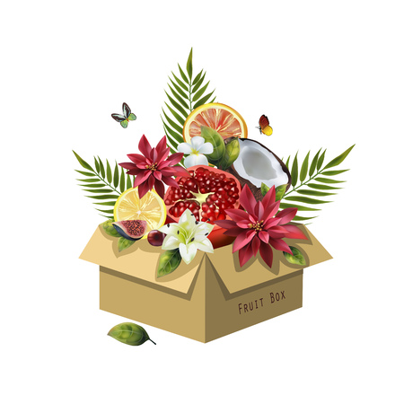 Image of fruits in a box on a white background. Realistic coconut, pomegranate, citrus, figs, cherries, palm leaves and flowers.