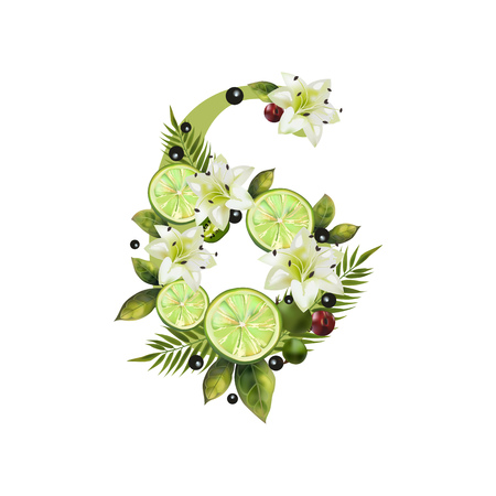 Digit Six of realistic lime and flowers on a white background. The figure is decorated with lilies, palm leaves and cherries