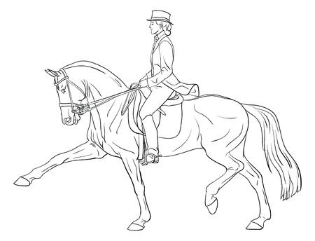 femme et cheval: La silhouette de dressage de chevaux Femme Banque d'images
