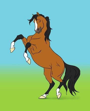 cartoon bay horse on colour background Stock Photo