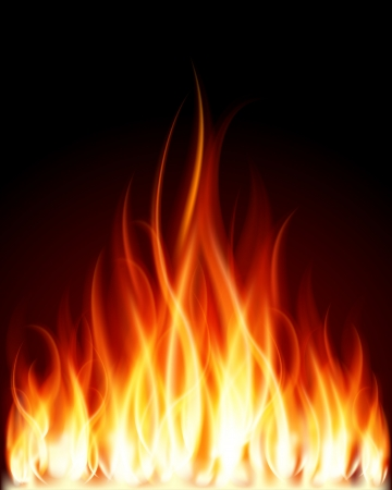 campfires: Burn flame fire vector background Illustration