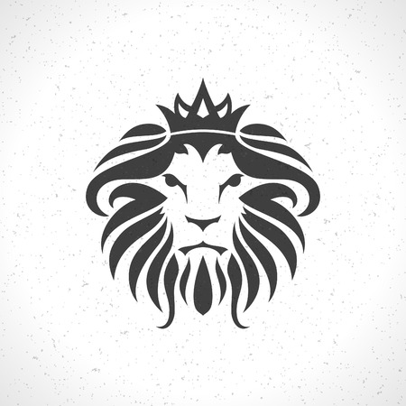 lion face stock photos royalty free lion face images