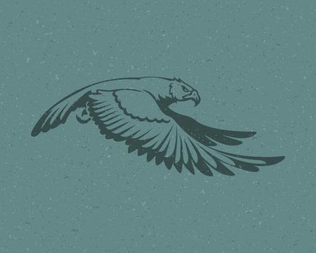 flying eagle: Eagle flying icon emblem template mascot symbol for business or shirt design. Vector Vintage Design Element. Illustration