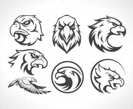 halcón: Eagles icono emblemas conjunto de plantillas símbolo mascota de diseño de negocios o una camisa. Vector Vintage Design Element.