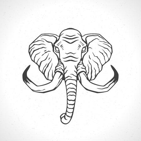 elephant: Elephant face icon emblem template mascot symbol for business or shirt design. Vector Vintage Design Element.