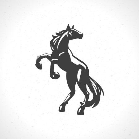 caballo: Caballo icono emblema s�mbolo plantilla mascota de dise�o de negocios o una camisa. Vector Vintage Design Element. Vectores