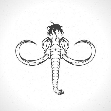 Mammoth icône de visage modèle de l'emblème symbole de mascotte pour la conception de l'entreprise ou de la chemise. Vector Vintage Design Element.