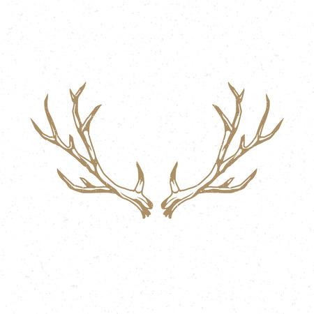 horny: Deer Horns hand drawn emblem template vector vintage design element.