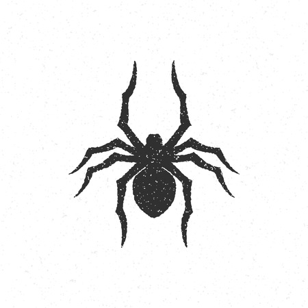 mystery: Halloween silhouette mystery spider hand drawn vector illustration