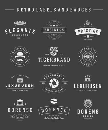 design elements: Retro  set vector vintage graphics design elements