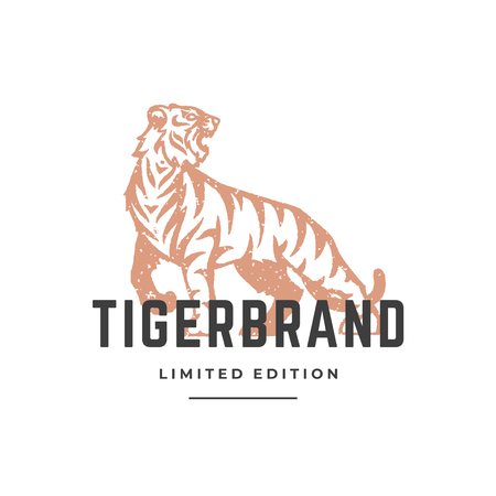 Tiger hand drawn, isolated on white background vector illustration Çizim