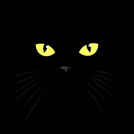 cats eye of a black cat. Vector illustration. eyes of a yellow cat in the dark.