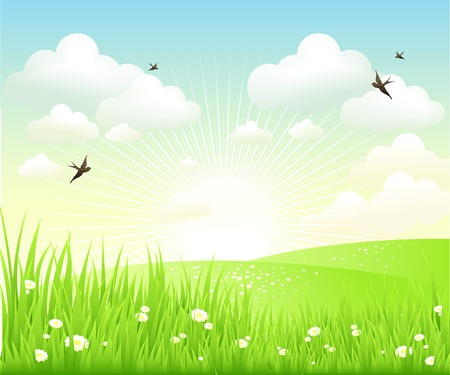 primavera: Limpie la primavera paisaje incre�ble. Vector paisaje de la naturaleza.