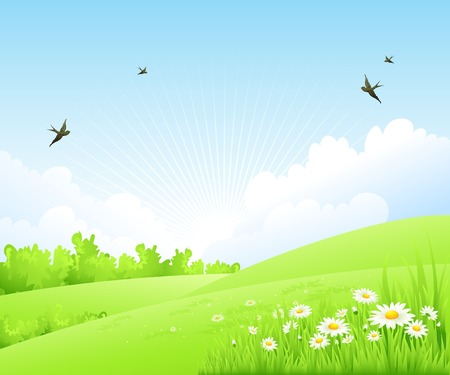 primavera: Limpie la primavera paisaje increíble. Vector paisaje de la naturaleza.
