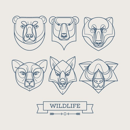 grizzly: Animaux lin�aires ic�nes de l'art. Vector illustration Illustration
