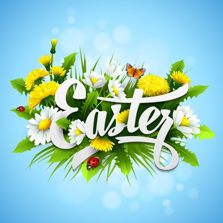 chamomile flower: Title Easter with spring flowers. Vector illustration
