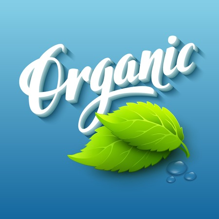 dewdrop: Realistic organic icon with leaves. Vector illustration