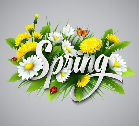 temporada: Fondo de primavera fresca con hierba, dientes de león y margaritas