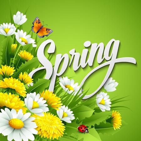 marguerite: Nouveau fond de printemps avec de l'herbe, le pissenlit et marguerites Illustration