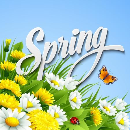 Verse lente achtergrond met gras, paardebloemen en madeliefjes